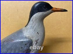 Excellent Common Turn Shorebird Carving by Dave Rhodes, Signed, with wood Stand
