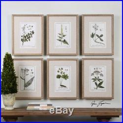 Green Floral Botanical Flower Leaf Berry Study Framed Wall Art Prints Set Of 6