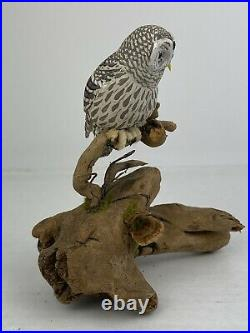 Vintage Barred Owl Miniature Bird Carving by Helen Lay Strong 1977
