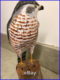 Vintage Peter Peltz Sharp Shiners Hawk Carved Wood Folk Art Bird Sculpture